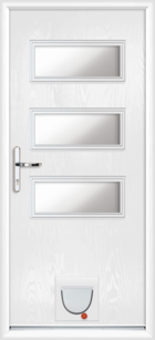 Newport composite doors with catflaps